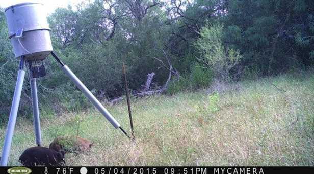 10691 San Antonio River Road - Photo 16