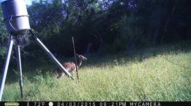10691 San Antonio River Road - Photo 8