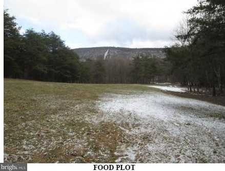 17305 Hares Valley Rd - Photo 18