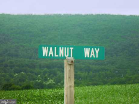 Lot 37 Walnut Way - Photo 1