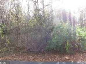 216 Spottswood Lane #4 - Photo 4