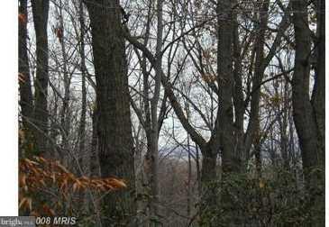 Mountain Meadow Ln - Photo 16