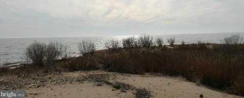Hoopers Island Road S - Photo 24