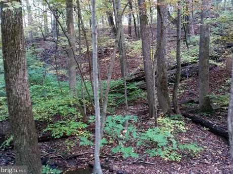 0 Witch Hazel Trail - Photo 8