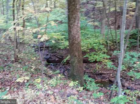 0 Witch Hazel Trail - Photo 6