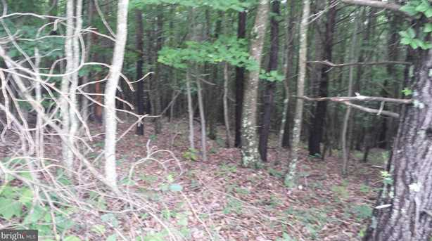 319 South Branch Mountain Rd - Photo 12