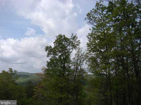 Bear Garden Trail - Photo 10