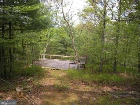 Bear Garden Trail - Photo 2