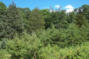 Chestnut Oak Lane - Photo 1