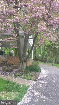 10617 Good Spring Avenue - Photo 2