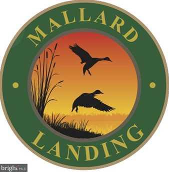 2247 Mallard Landing Drive - Photo 18