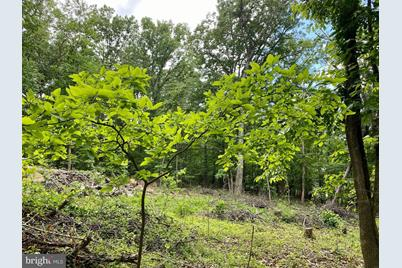 Lot 2 Red Maple - Photo 1