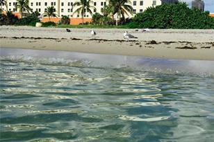 101 N Ocean Dr #549 - Photo 1